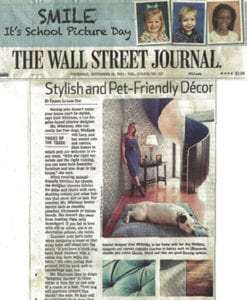 Stylish and Pet-Friendly Decor